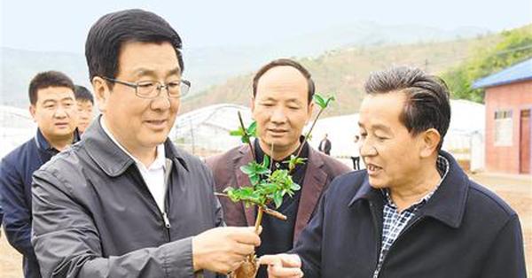 林铎在通渭县调研指导脱贫攻坚和基层党建工作
