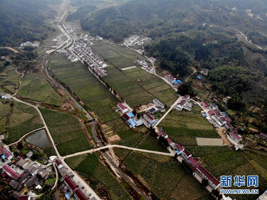 (经济)(1)安徽岳西:高山茭白富农家