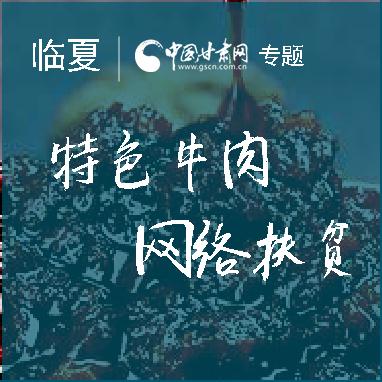 """I@甘肃 2019网络扶贫博览会""临夏站网络直播今日举行"