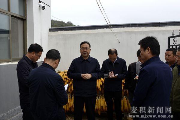 张智明督查调研伯阳镇脱贫攻坚和基层党建工作