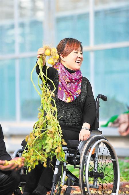轮椅上的美丽奉献 ——记2019年全国脱贫攻坚奖奉献奖获得者李晓梅