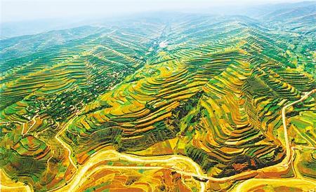 【守护母亲河 建设幸福河——推动黄河流域生态保护和高质量发展系列报道】兴水播绿,山河变样景色新