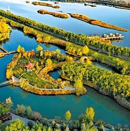 甘肃三大公园入选中国森林氧吧