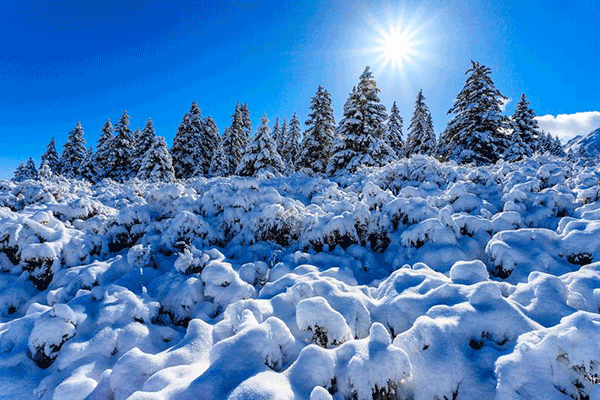 山丹马场初冬