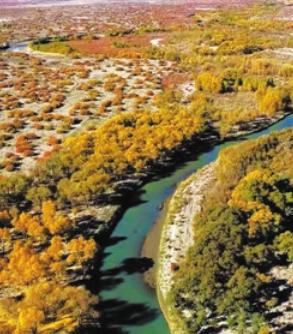 干涸消失三百年哈拉奇湖在戈壁重生