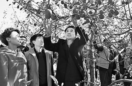 庆阳庆城县总工会举办果园管理培训班