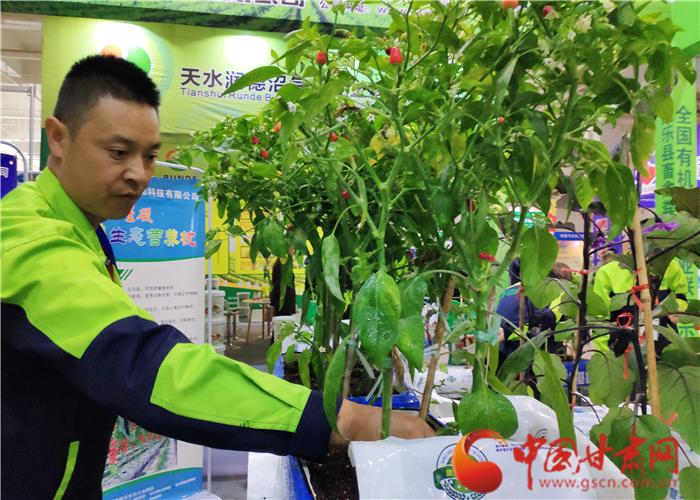 甘肃推进农业绿色发展:化肥减量用 农药零增长