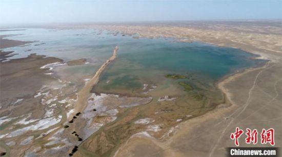 图为疏勒河终端湖——哈拉奇生机盎然。 钟欣 摄