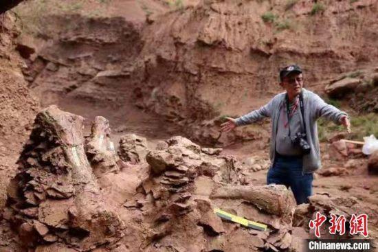 """""""恐龙之乡""""甘肃永靖部分化石遗迹仍面临多种威胁"""