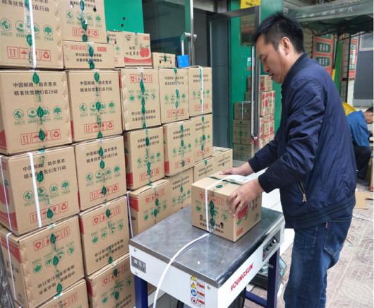 """白银邮政护航""""四龙苹果""""畅销全国20余万斤"""