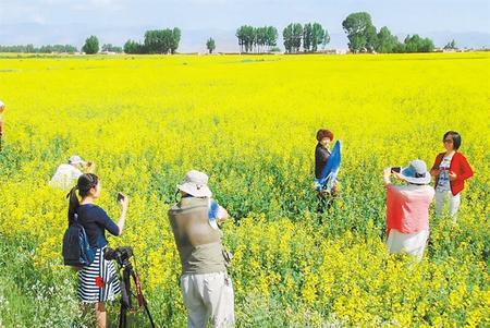 做现代农业的践行者 ——金昌市永昌县农民专业合作社发展纪实