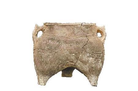 【走进考古】金戈铁马——毛家坪遗址的重要发现
