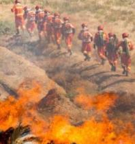 """甘肃针对森林火灾特点 多措并举实现""""打早打小打了"""""""