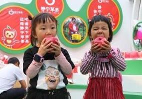 """【扶贫】静宁苹果深圳行:扶贫果南下""""捞金""""12亿"""