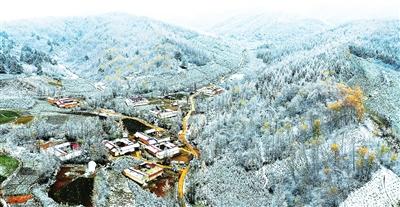 临夏州康乐:冬日山林画中来