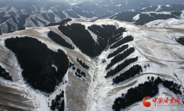 【环保】张掖肃南:既要绿水青山 亦要金山银山