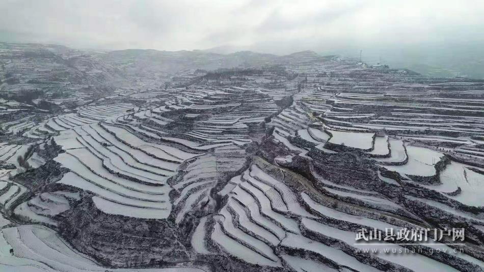 听,雪落在武山这片大地上