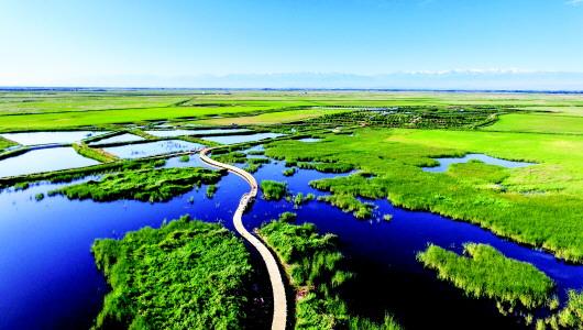 """""""融""""出深度 """"加""""出空间——肃州区以主题教育推动全域旅游高质量发展"""