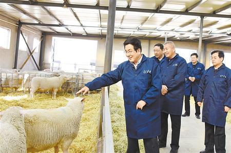 林铎:努力推动经济实现高质量发展