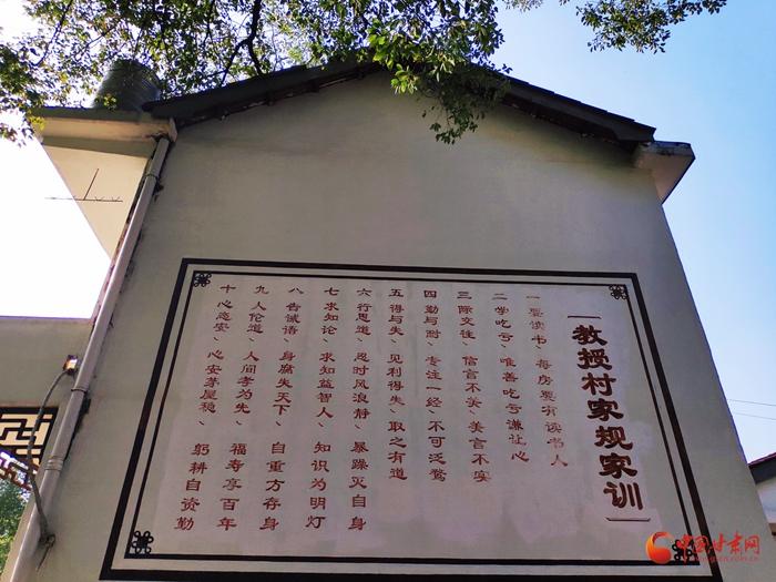 江西南昌县:樟树参天的小村庄百年来走出300多位熊姓教授