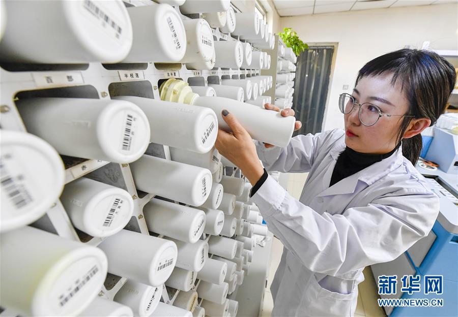 (健康)(4)河北文安:打造基层优质医疗服务环境