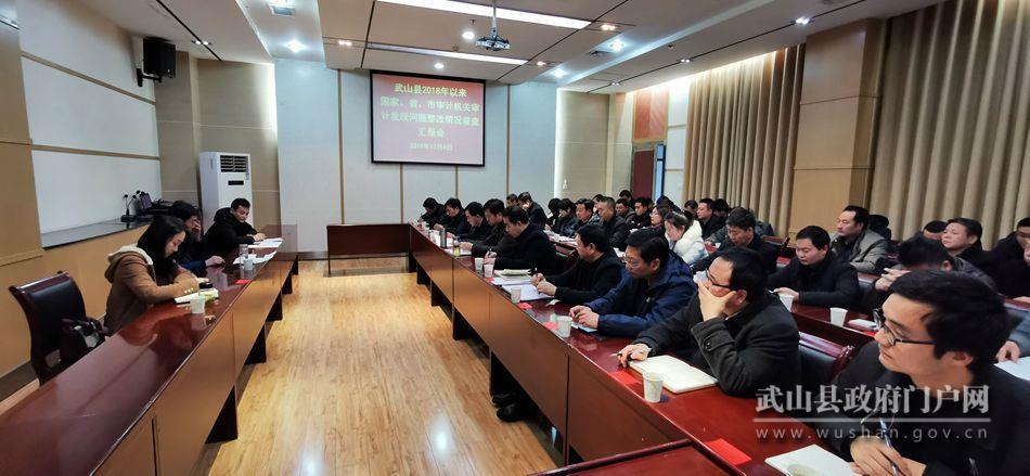 武山县召开2018年以来各级审计机关审计发现问题整改情况督查汇报会