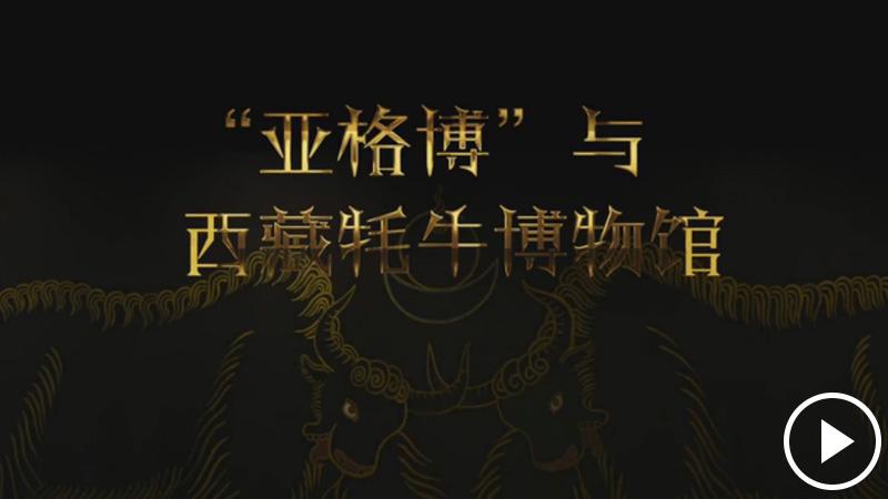 """""""老牦牛""""亚格博的西藏情缘——记北京援藏干部吴雨初"""