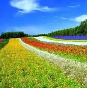甘肃省重点培训四千余旅游致富带头人