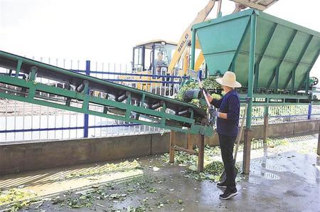 变废为宝的绿色发展之路——张掖市甘州区废旧农膜回收利用和尾菜处理见闻