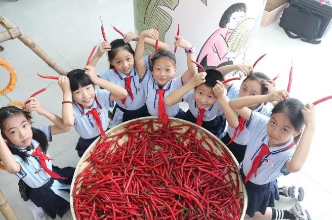 如何在中小学开展劳动教育?