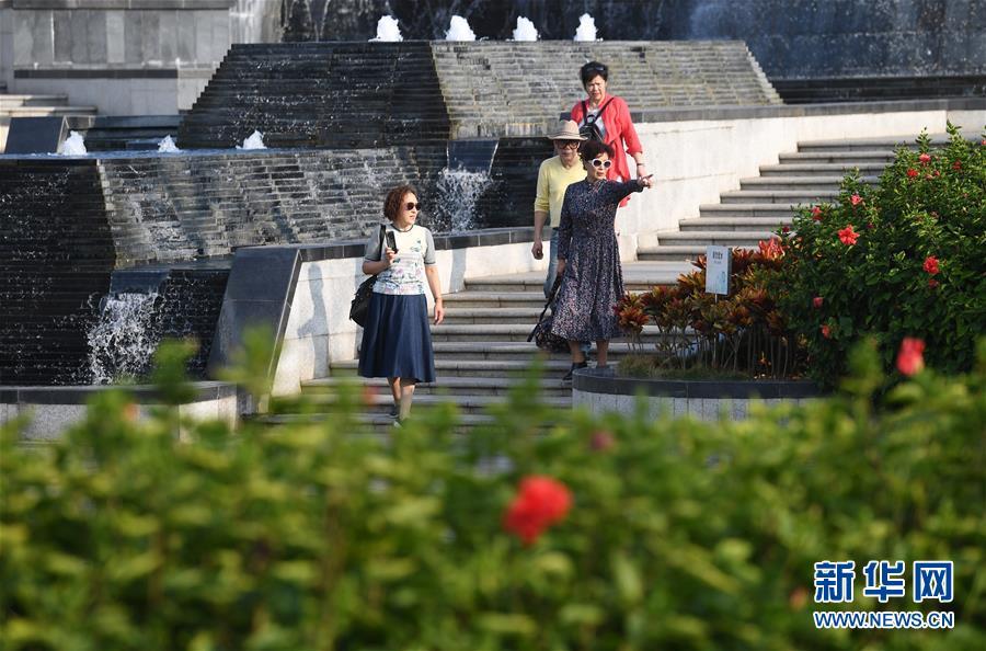 (环境)(2)广西南宁:花开在冬季