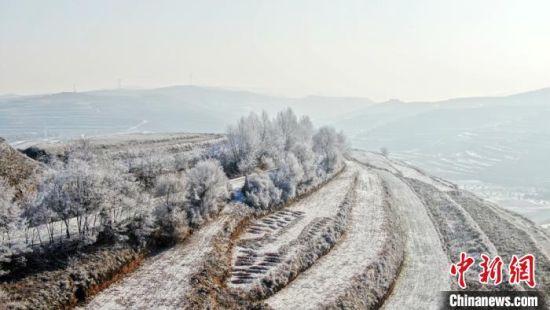 甘肃定西昔日荒山披绿装:引客体验冰雪温泉