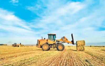 甘肃:麦田里全程机械化
