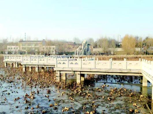 冬韵之水川湿地公园
