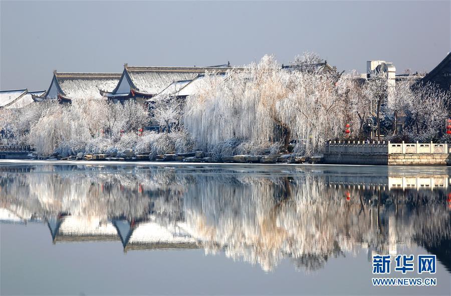 #(环境)(2)山东聊城:雾凇美景惹人醉
