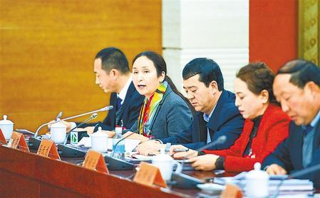 【聚焦2020甘肃两会】省十三届人大三次会议各代表团分组审议《政府工作报告》(图)