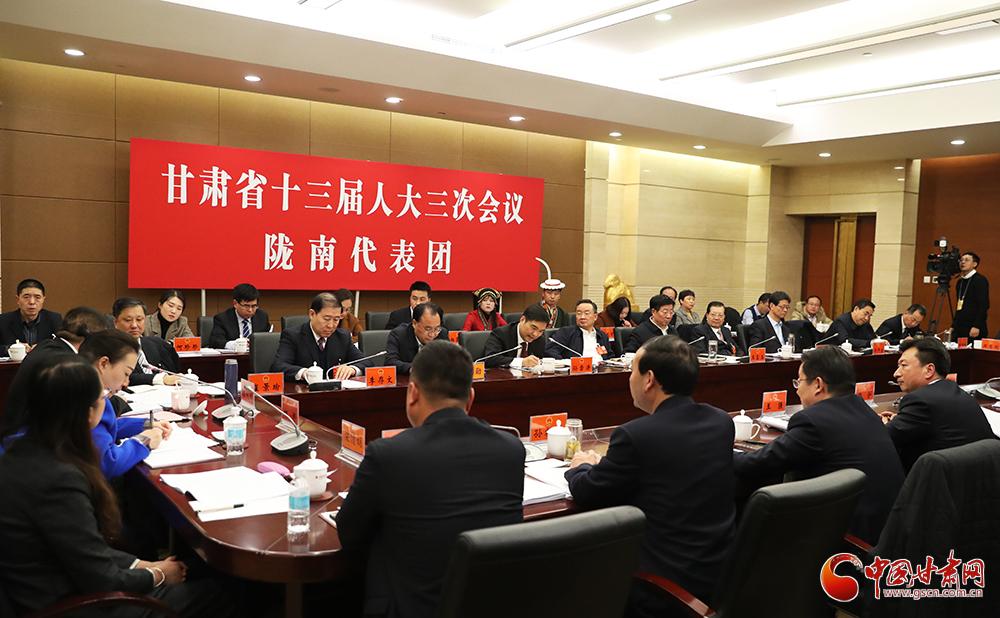 唐仁健在陇南代表团、平凉代表团参加审议《政府工作报告》