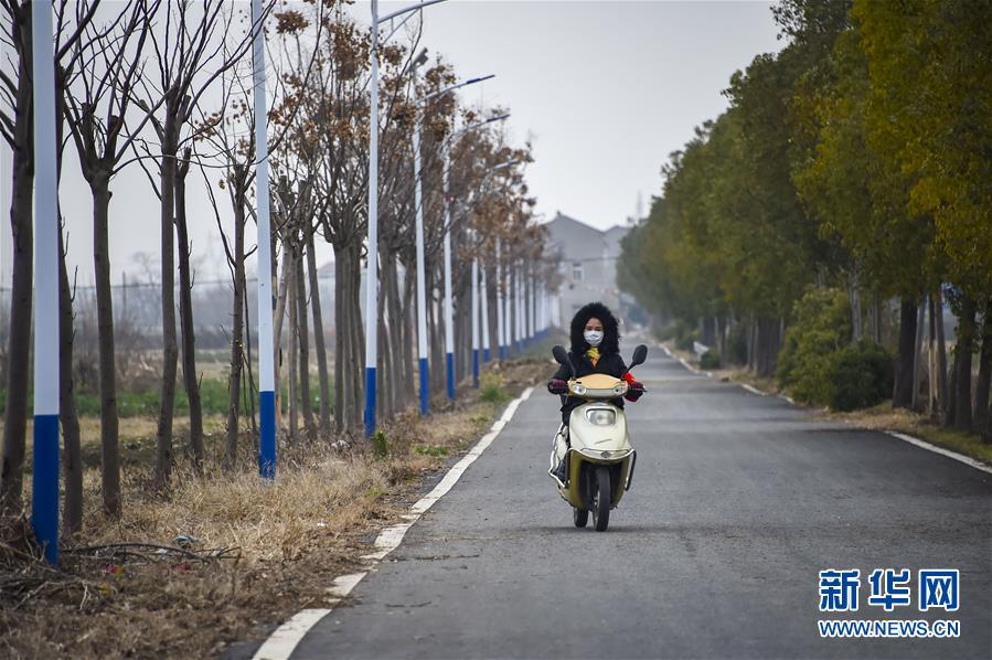 (聚焦疫情防控·图文互动)(4)一个湖北村庄的阻击战