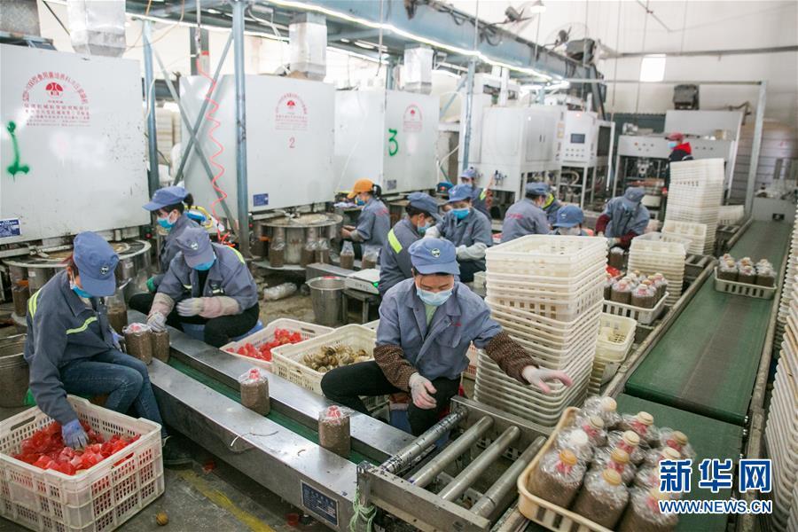 #(聚焦疫情防控)(1)贵州大方:山区企业复工忙