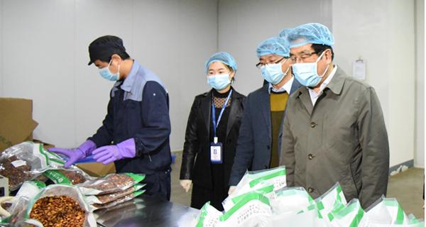 林铎在陇西调研指导疫情防控和生产恢复