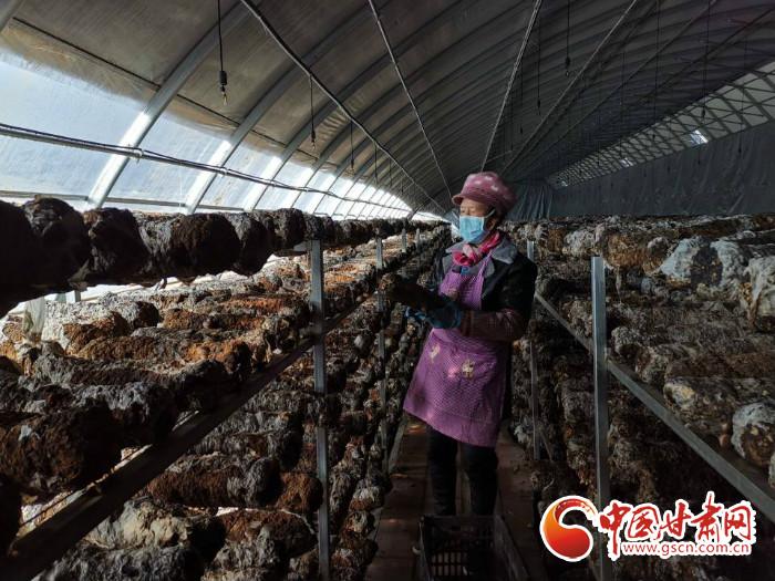 http://www.qwican.com/jiaoyuwenhua/2996237.html