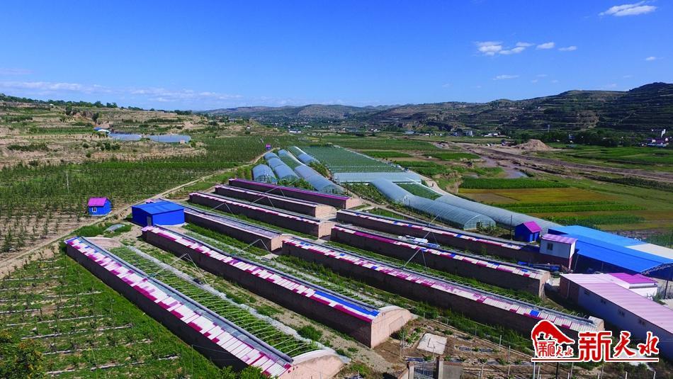 春天里,耕耘在希望的田野上——天水春耕备耕工作综述