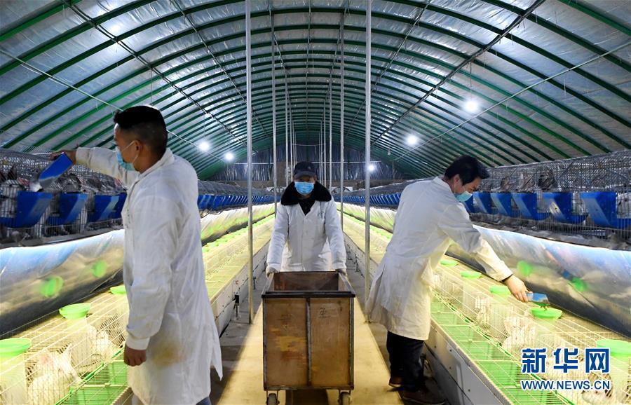 (经济)(2)河南孟津:复工复产助扶贫