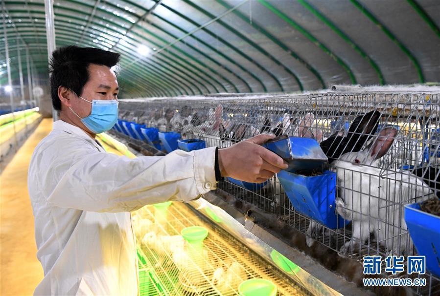 (经济)(3)河南孟津:复工复产助扶贫