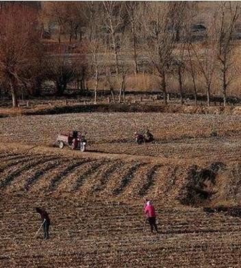 甘肃省农业生产基本恢复正常