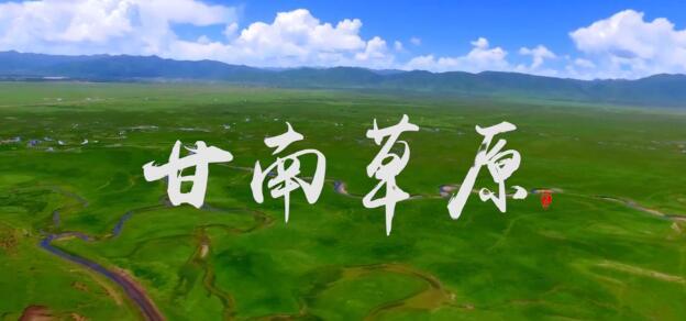 陇上有名|甘南草原