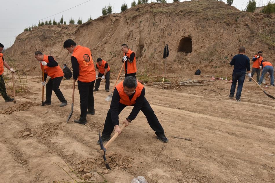 天水市博物馆志愿者积极参加连翘园义务植树活动