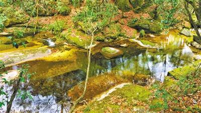 甘肃旅游丨八福沟,西秦岭深处的水韵秘境
