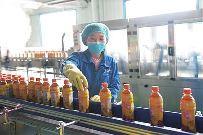 临夏州和政县因地制宜大力发展啤特果特色产业