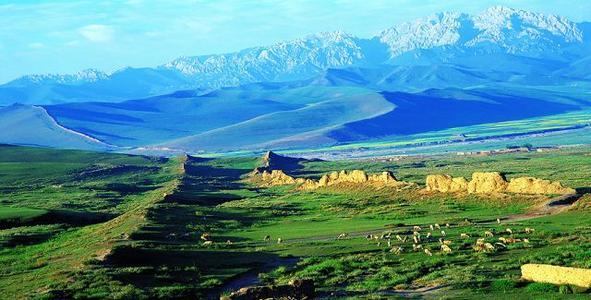 拥有甘肃省内单体规模最大的示范性牧场